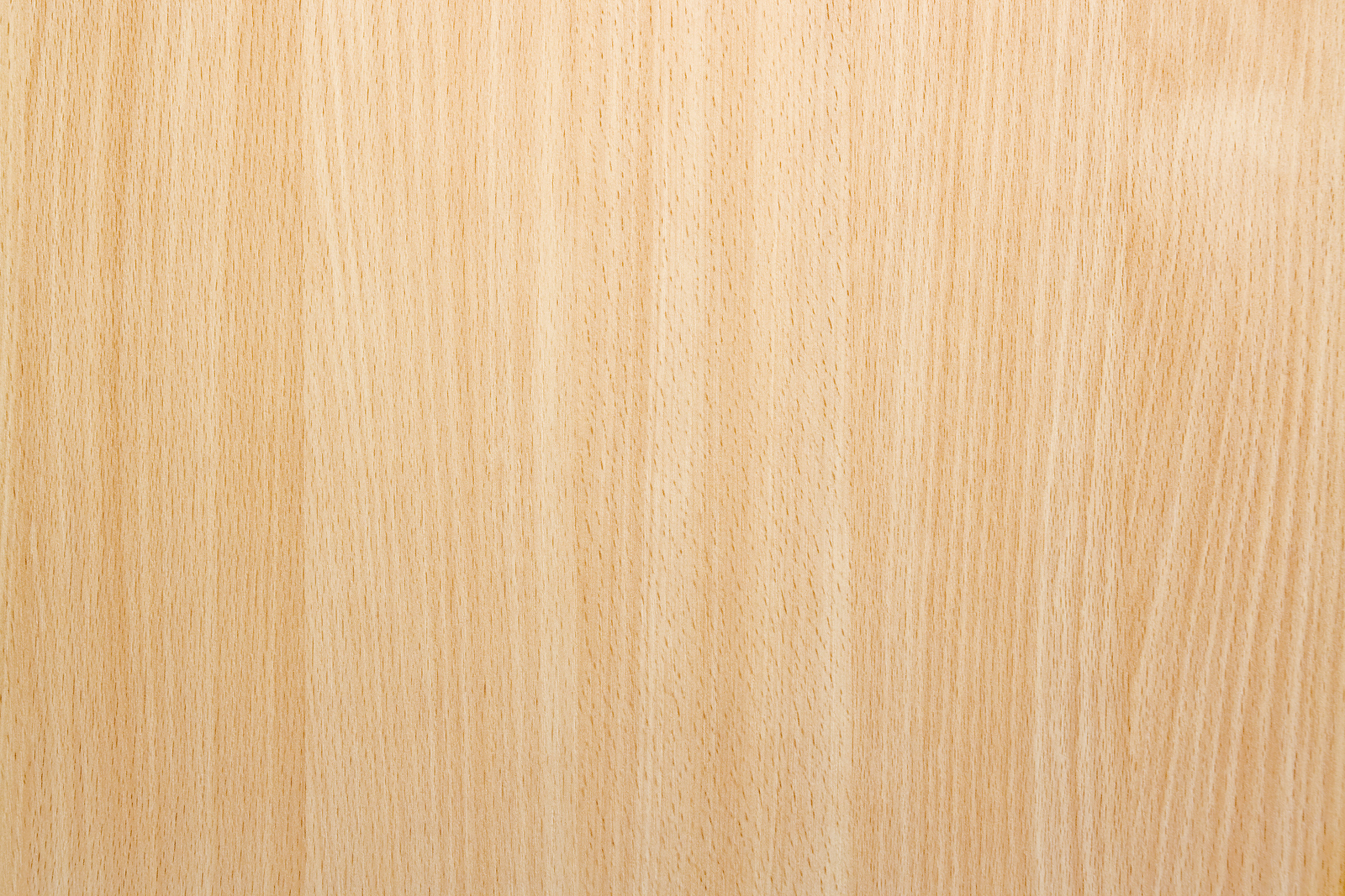 Natural Beech Wood Background Texture Safitri Jati Furniture