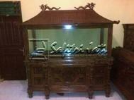 Aquarium Jepara